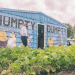 Humpty Dumpty School